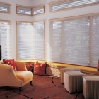Abutted Window Shade
